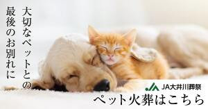 JAooigawa_pet_bn_W1200H628_2_2